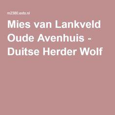 Mies van Lankveld Oude Avenhuis - Duitse Herder Wolf