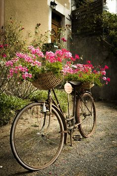 The flower bicycle, Béhuard, France (by tilominlo). by Abhay Bajaj