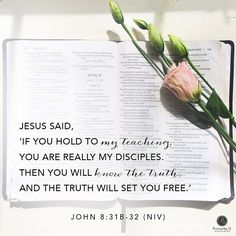 """John 8: 31b - 32 Proverbs 31 Online Bible Study (@p31obs) on Instagram: """"Let's apply this: How has the truth of God's Word set you free? (share below)"""""""