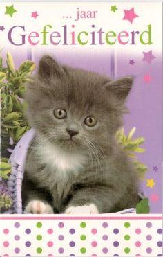 ...jaar  Gefeliciteerd!   Leeftijdskaart voor om zelf in te vullen Om, Cats, Animals, Carton Box, Gatos, Animaux, Animales, Cat, Kitty