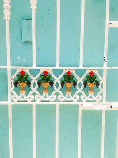 Dominican Republic La Romana Travel Guide Visit honeymoon holiday-194