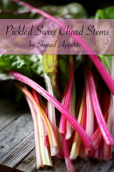 Pickled Swiss Chard Stems!  A creative and delicious way to avoid wasting those precious swiss chard stems... These bright refrigerator pickles have just the right amount of sweet and heat!