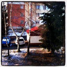 Joanna Brożek @joannabr.48 Instagram photos | Websta