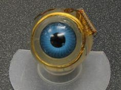Retinal Implant Offers New Hope for the Blind:
