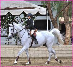 Noah Cyrus Has Fun Horseback Riding Over The Weekend