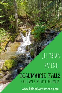 Bosumarne Falls in Chilliwack, British Columbia is a perfect hike for families with kids! It's a short hike with a breathtaking reward! Vancouver Hiking, Fall Dates, Open Up, Weekend Getaways, Day Trip, British Columbia, The Neighbourhood, Waterfall, Activities