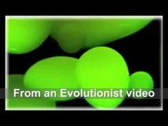 The origin of life: A big problem for Evolutionists!