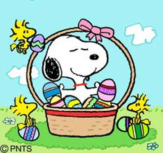 Charlie Brown Easter, Charlie Brown Und Snoopy, Snoopy Comics, Snoopy Images, Snoopy Pictures, Peanuts Cartoon, Peanuts Snoopy, Easter Cartoons, Snoopy Und Woodstock