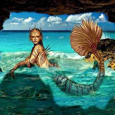 "- Brandi Morris (@portfolio_of_brandi) on Instagram: ""#siren #ocean #sea #water #mermaid #art #artist #photoshop #fantasy #concept #conceptart #design…"""
