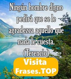 https://frases.top/frases-agradecimiento/ ¡¡Increíbles  Frases de Agradecimiento!!
