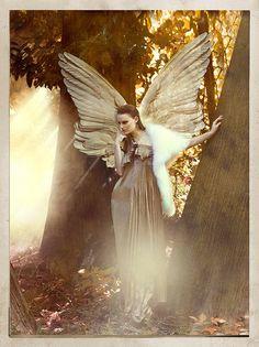 """ANGELO CADUTO 30.Foto della serie """"ANGELI CADUTI"""" Canon EOS ds 1 luce naturale . ALI e FILTRATURA DIGITALI. MILANO 13 GIUGNO 2014"""