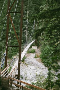 Devil's Dream to South Puyallup River // Wonderland Trail at Mount Rainier, Washington State   //   From Fox in the Pine