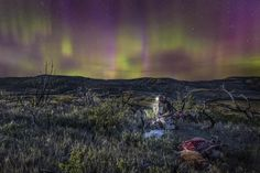 North 40 Outfitters - Photography Elk hunting. Northern lights. Missouri River Breaks Montana