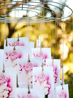 For this photo chandelier, a tight-in shot of a single flower works well. You also could pick a few flowers in your party's colors to showcase.