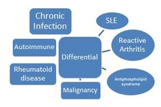 Differential diagnosis (Square > Oval)