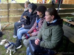 Hundeolympiade 27.10.2012 - Hühner auf der Bank. Mein Lieblingsbild