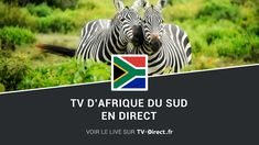 Afrique du sud TV à regarder en direct sur internet et en replay streaming. Live télévision en ligne des chaines tv sud africaine. Tv Direct, Sur Internet, Direction, Replay, Live Tv, South Africa, African, Fishing Line