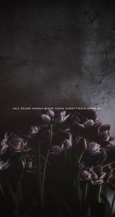 Its what it makes you feel because people change but memories always – His – Dizi Filmler Burada Flower Phone Wallpaper, I Wallpaper, Wallpaper Backgrounds, Make You Feel, How Are You Feeling, People Change, Cool Words, Best Quotes, Quotations