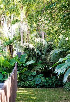 Fun Backyard Landscaping Idea How About An Exotic, Tropical Backyard Resort 6 - topzdesign . Tropical House Plants, Tropical Garden Design, Tropical Landscaping, Small Tropical Gardens, Palm Garden, Stone Landscaping, Garden Villa, Exotic Plants, Small Gardens