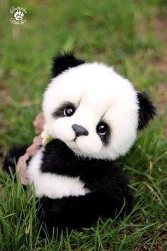 Babypandas Susse Tiere Susse Tiere Bilder Susse Baby Tiere