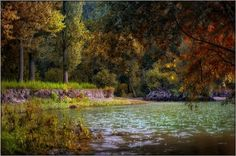 Ain't no sunshine Photo by Gabor Dvornik -- National Geographic Your Shot