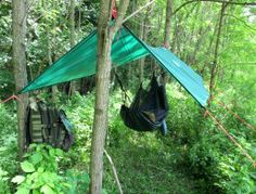 Survive 2012 - Wilderness Survival Skills - The Online Guide