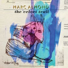 Marc-almond-velvet-trail.jpg (500×500)