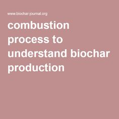 combustion process to understand biochar production