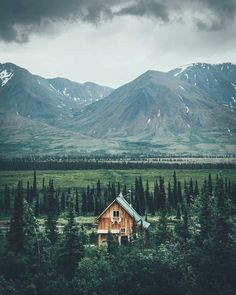 Oh to be here 💕 Misty mountains