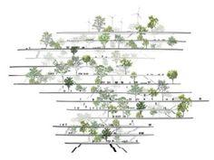 Sou Fujimoto Architects | a f a s i a
