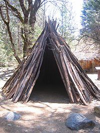 Miwok people. I think my students could recreate this with small sticks!