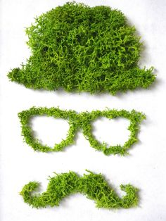 "Tableau végétal original ""Chapeau Lunettes Moustaches"" Moss Wall Art, Moss Art, Moss Graffiti, Moss Decor, Moss Garden, Moustaches, Plant Wall, Nature Crafts, Interior Design Living Room"