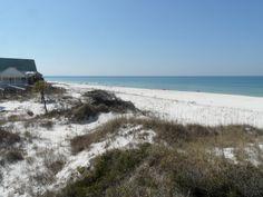 Cape San Blas Gulf Front Lot on Florida's Forgotten Coast.