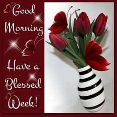 Good Morning Have A Blessed Week monday good morning monday quotes good morning quotes happy monday monday quote happy monday quotes good morning monday Good Morning God Quotes, Good Morning Sister, Good Monday Morning, Good Morning Prayer, Morning Morning, Good Morning Gif, Morning Blessings, Good Morning Picture, Good Morning Messages