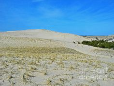 Dunes on the Cape