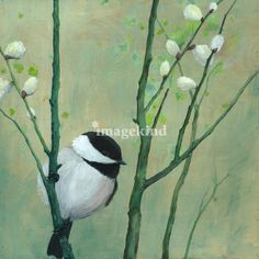 Chickadee and Pussy Willows | paintings by Kate Halpin www.katehalpinart.com