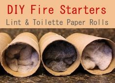 oh duh, and I've only been saving tp rolls for cheap plant starters and lint for making felted stuff.