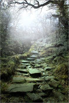 """Bild von Nadine Conrad - """"mystische Treppe""""                                                                                                                                                                                 Mehr"""
