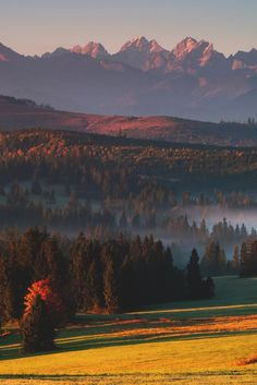 Tatra Mountains, Poland   - Explore the World with Travel Nerd Nici, one Country at a Time. http://TravelNerdNici.com