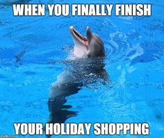 Who else is feeling this relief? Dolphin Tale 2, Funny Images, Funny Pictures, Marines Funny, Clearwater Marine Aquarium, Dolphin Photos, Tuna Fishing, Bottlenose Dolphin, Ocean Quotes