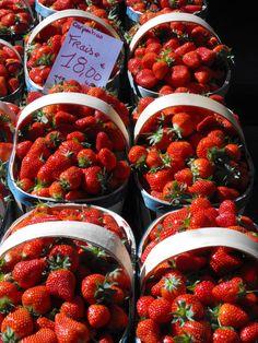 Les fraises de Carpentras, dès le mois d'avril Strawberries from Carpentras