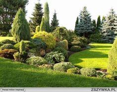 ogród marzeń - Szukaj w Google