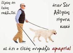 Labrador Retriever, Bible, Labrador Retrievers, Biblia, Labrador, Labrador Retriever Dog, The Bible