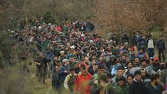 Syrian refugees: The Myth and Reality of Artificial Propoganda
