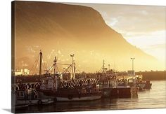 South Afrika, Most Beautiful Cities, Countries Of The World, Fishing Boats, Cape Town, Homeland, Dawn, Coastal, Southern