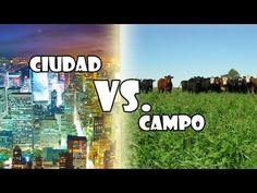 Ciudad vs. Campo