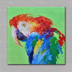 одного современного абстрактного чистого ничья рука готовы повесить декоративную картину маслом попугай 2016 – p.3 090,55