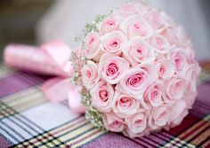 wedding bouquet, Pale pink is sweet for a spring or summer bride. A halo of baby's breath provides just a little color and texture contrast.