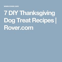 7 DIY Thanksgiving Dog Treat Recipes | Rover.com