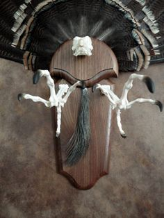 Ten X Turkey Tail Fan (Closeup) Skull beard feet talons walnut panel custom bone articulation. Mounted by Classic Antler Mounts LLC. Deer Hunting Decor, Pheasant Hunting, Hunting Art, Coyote Hunting, Archery Hunting, Deer Antler Crafts, Antler Art, Antler Mount, Deer Skull Tattoos